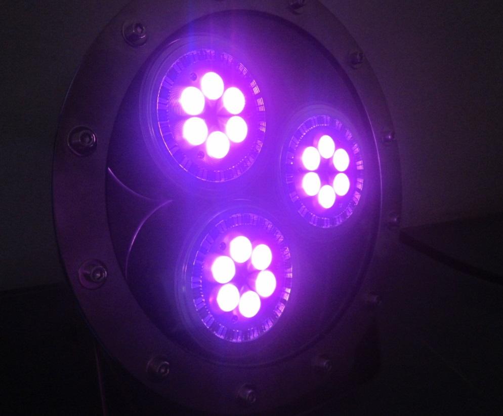TRIPLE LED